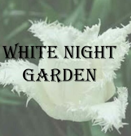 WHITE NIGHT GARDENS / BEAUTY IN THE DARK